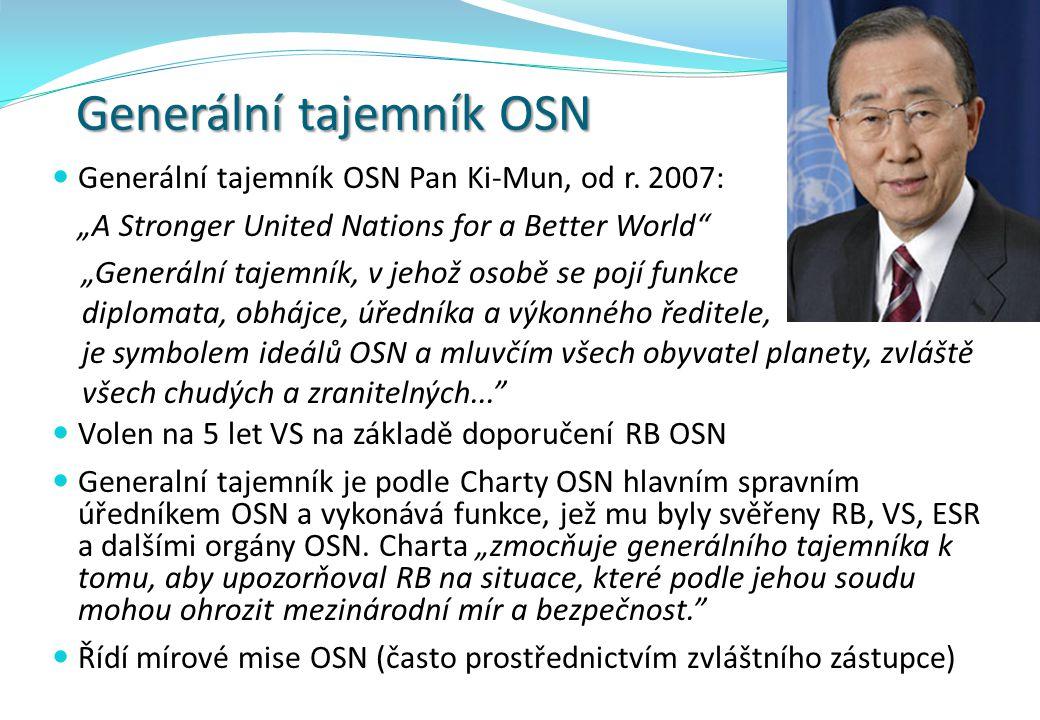 Generální tajemník OSN