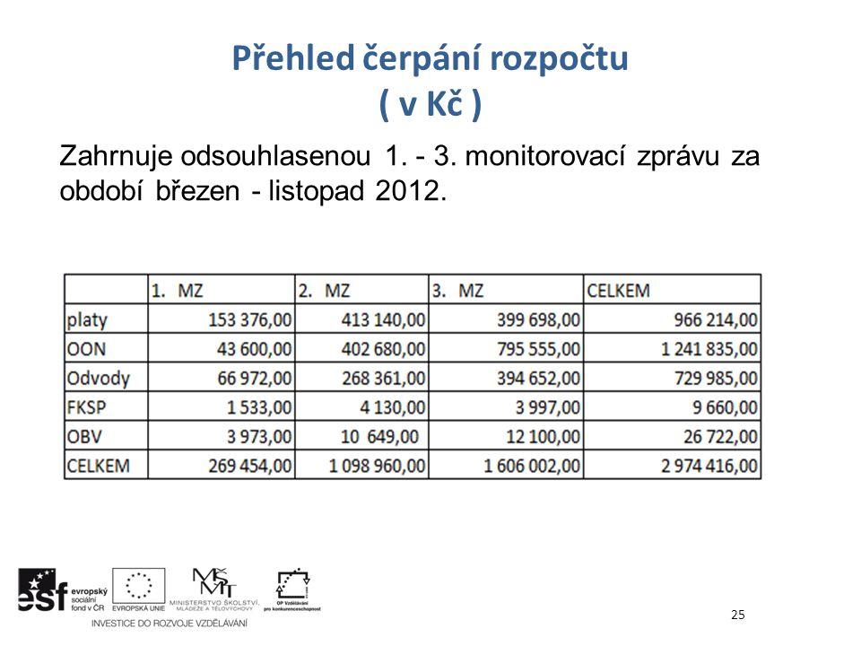 Přehled čerpání rozpočtu ( v Kč )