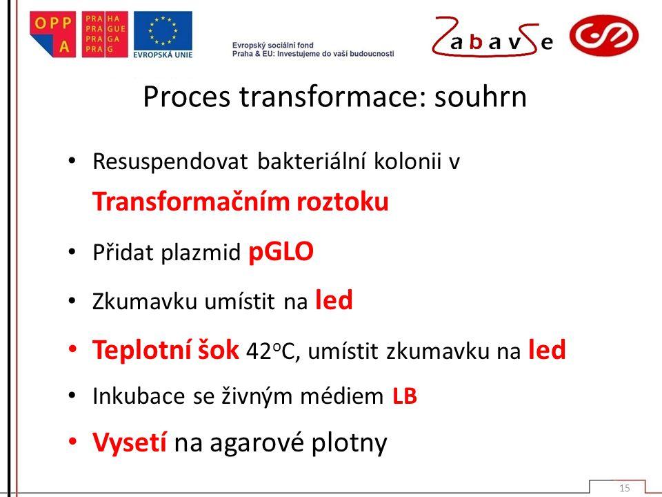 Proces transformace: souhrn