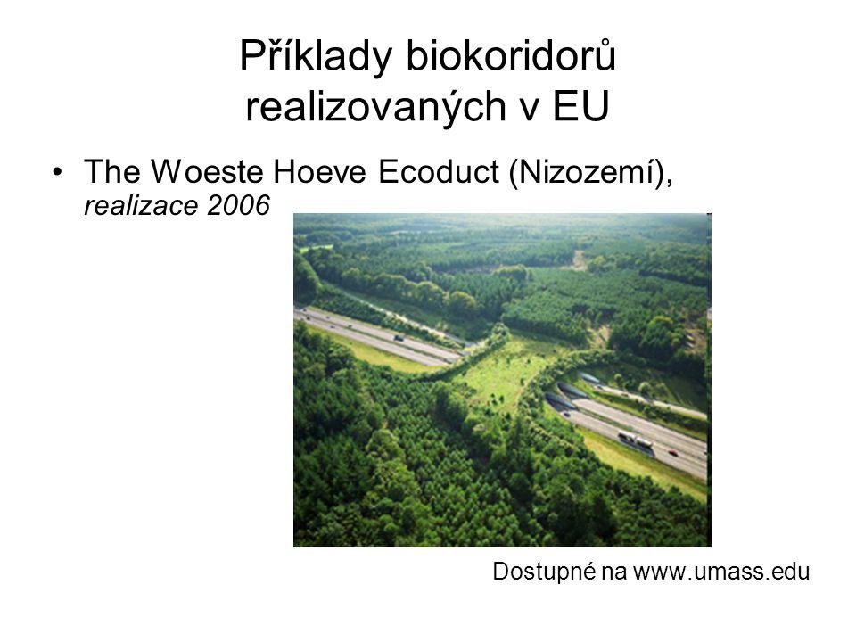 Příklady biokoridorů realizovaných v EU
