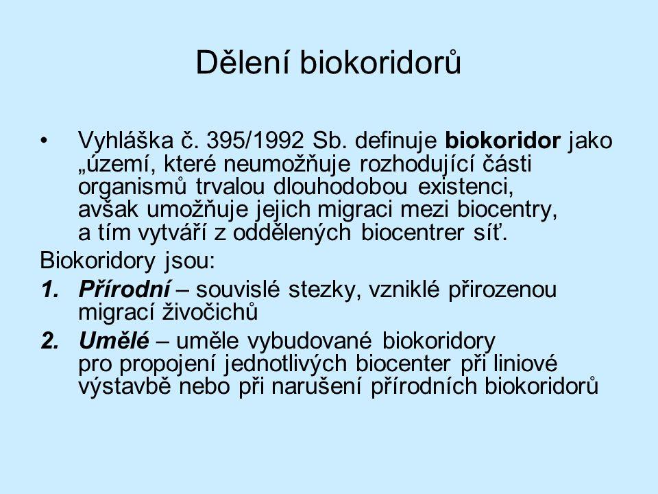 Dělení biokoridorů
