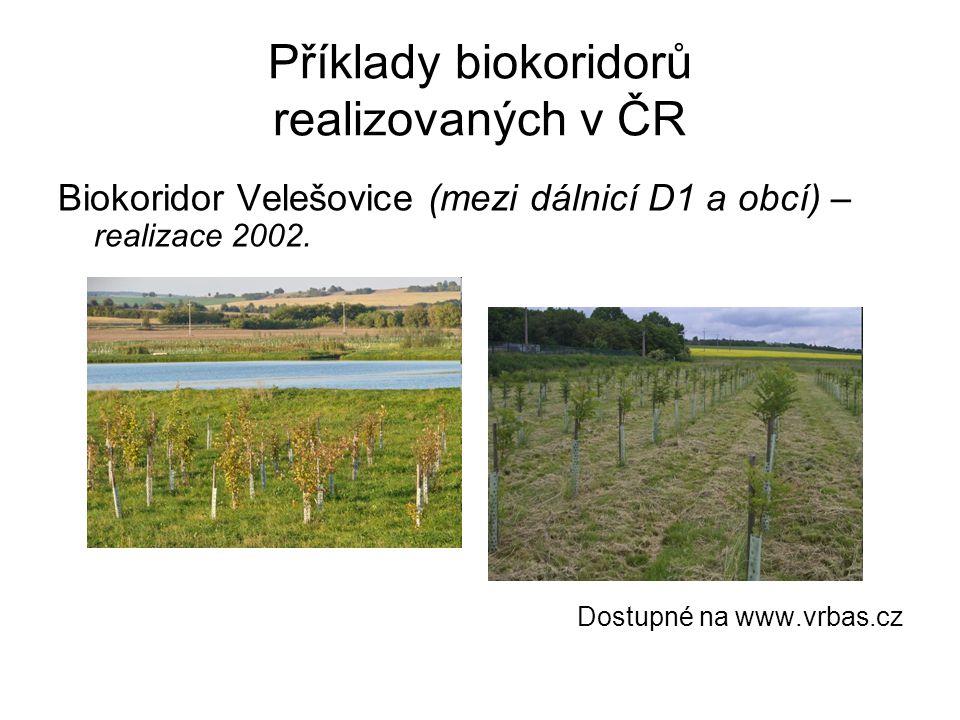 Příklady biokoridorů realizovaných v ČR