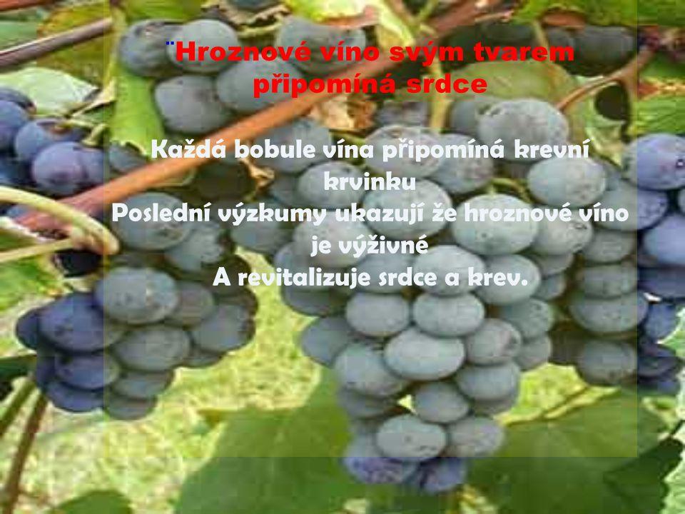 ¨Hroznové víno svým tvarem připomíná srdce