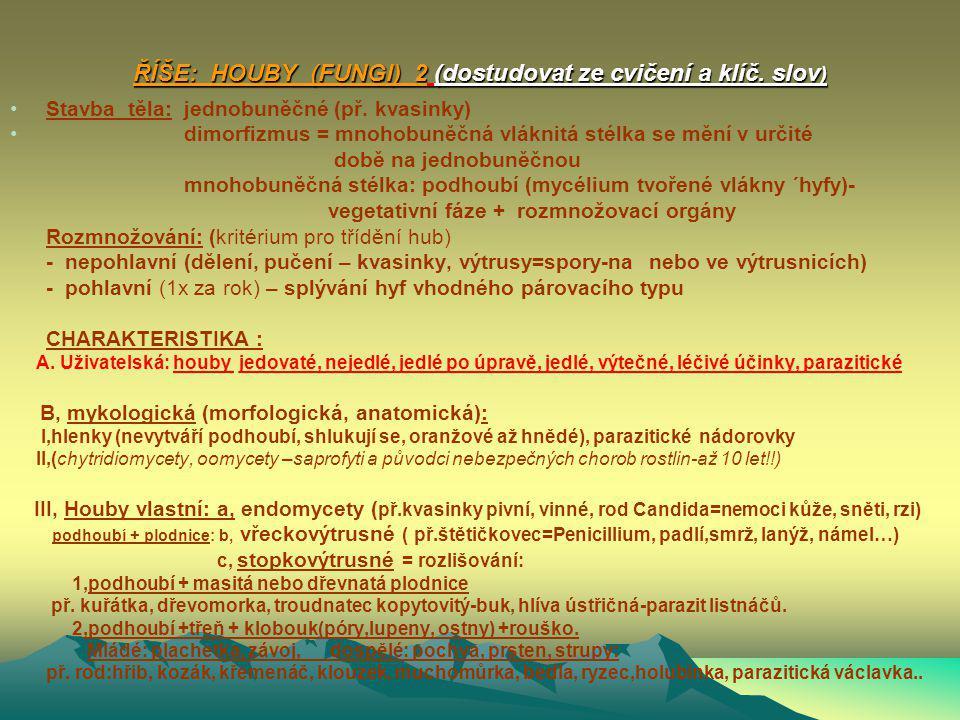 ŘÍŠE: HOUBY (FUNGI) 2 (dostudovat ze cvičení a klíč. slov)