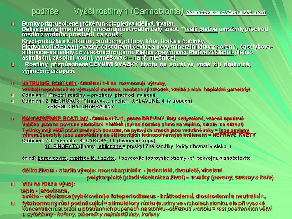 podříše Vyšší rostliny 1 (Carmobionta) (dostudovat ze cvičení a klíč