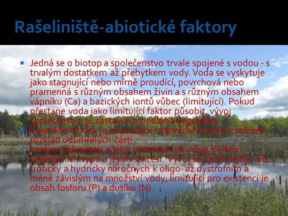 Rašeliniště-abiotické faktory