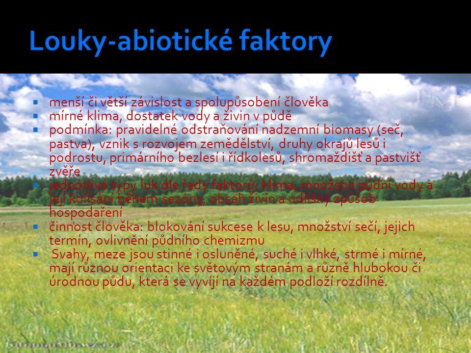 Louky-abiotické faktory