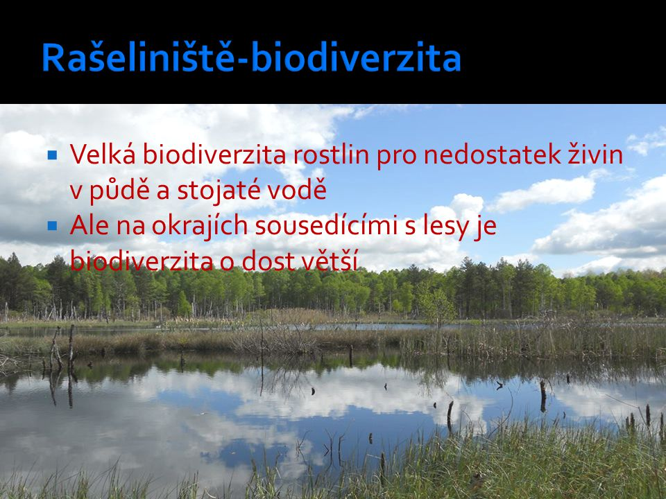 Rašeliniště-biodiverzita