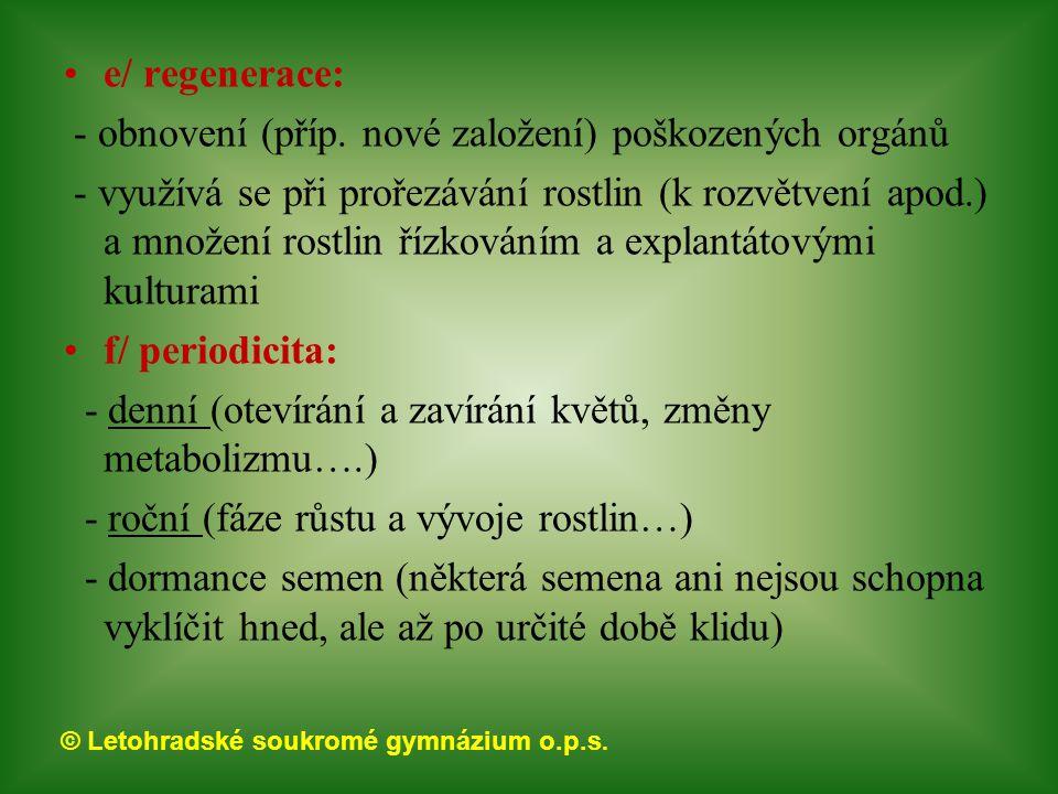 e/ regenerace: - obnovení (příp. nové založení) poškozených orgánů.