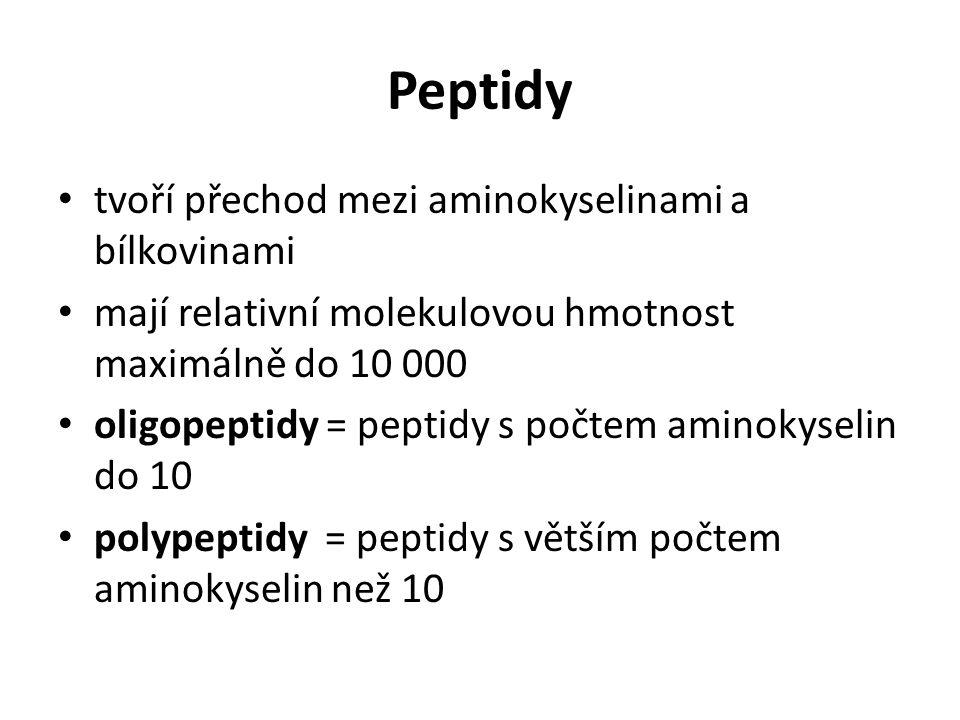 Peptidy tvoří přechod mezi aminokyselinami a bílkovinami