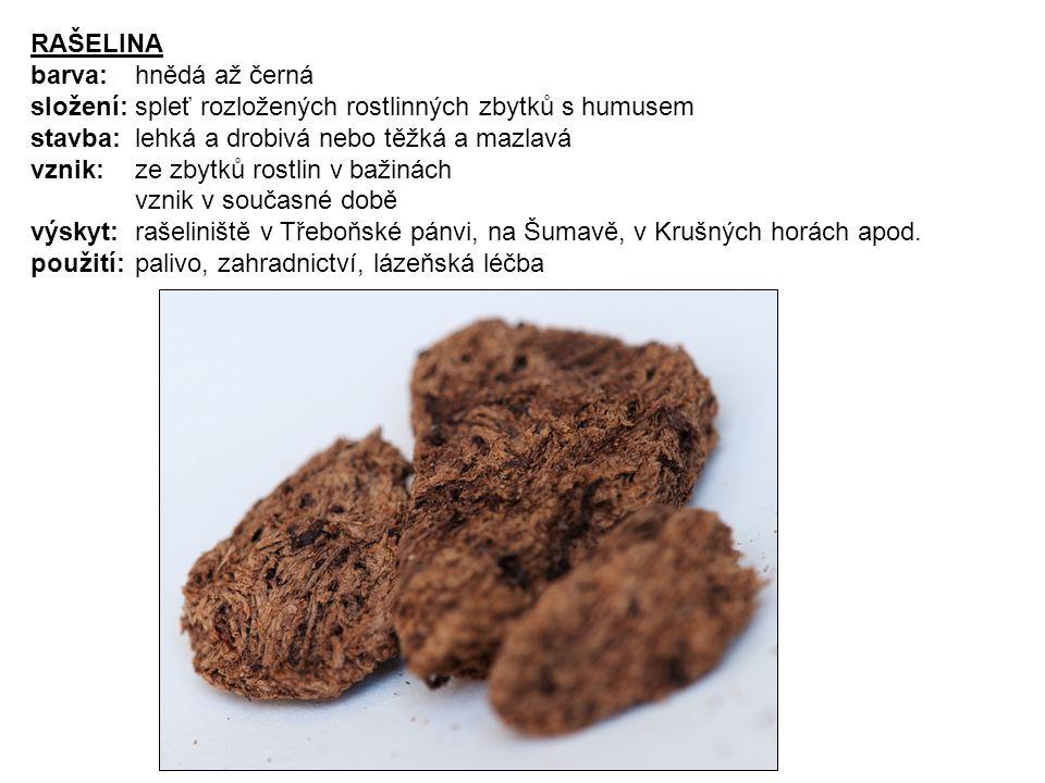 RAŠELINA barva: hnědá až černá. složení: spleť rozložených rostlinných zbytků s humusem. stavba: lehká a drobivá nebo těžká a mazlavá.