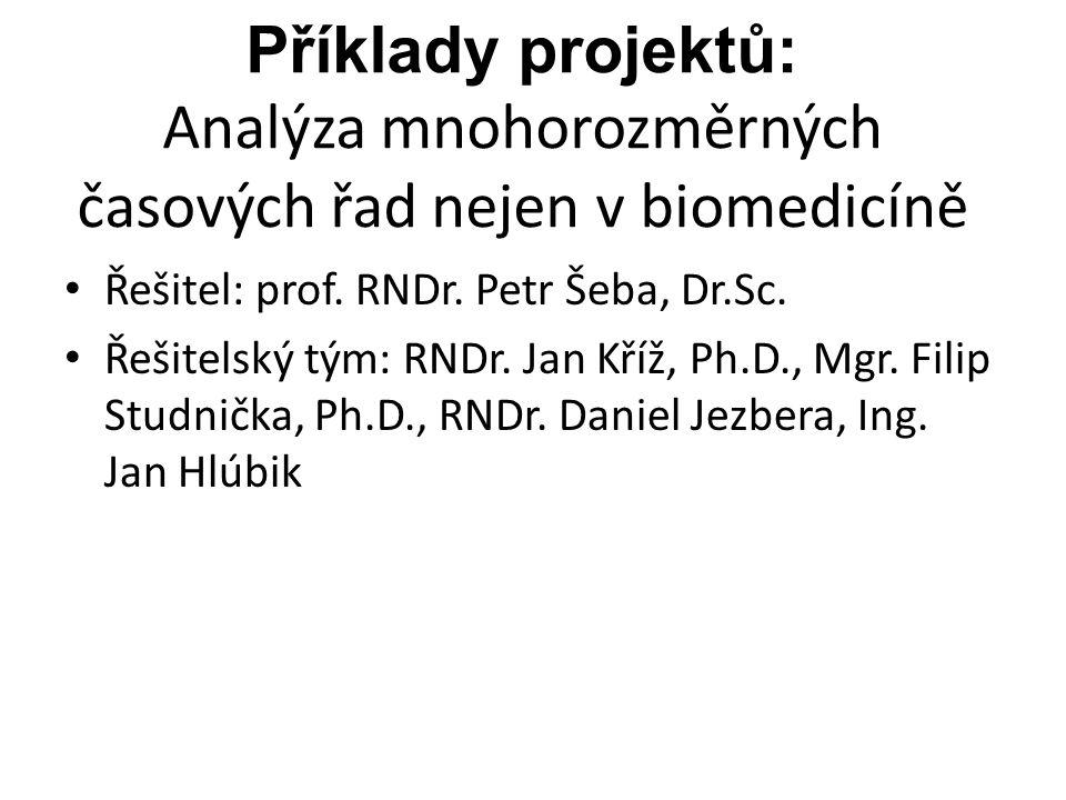 Příklady projektů: Analýza mnohorozměrných časových řad nejen v biomedicíně