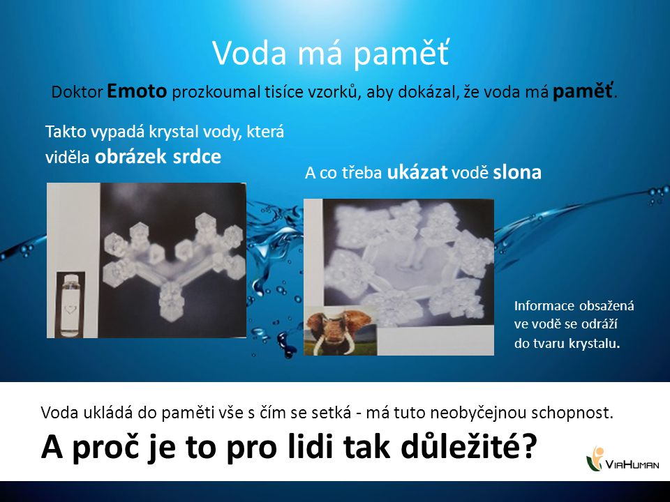 Doktor Emoto prozkoumal tisíce vzorků, aby dokázal, že voda má paměť.