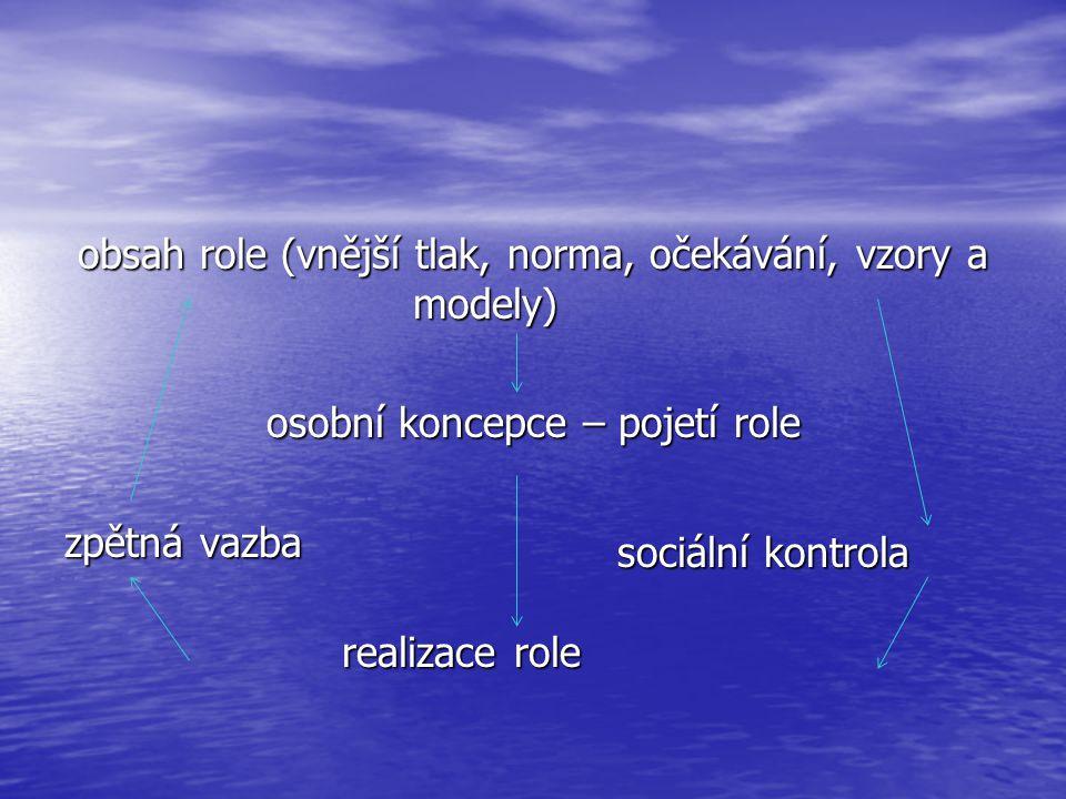 obsah role (vnější tlak, norma, očekávání, vzory a modely) osobní koncepce – pojetí role zpětná vazba realizace role
