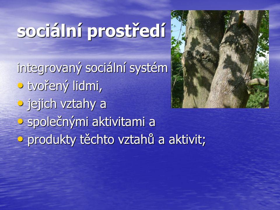 sociální prostředí integrovaný sociální systém tvořený lidmi,