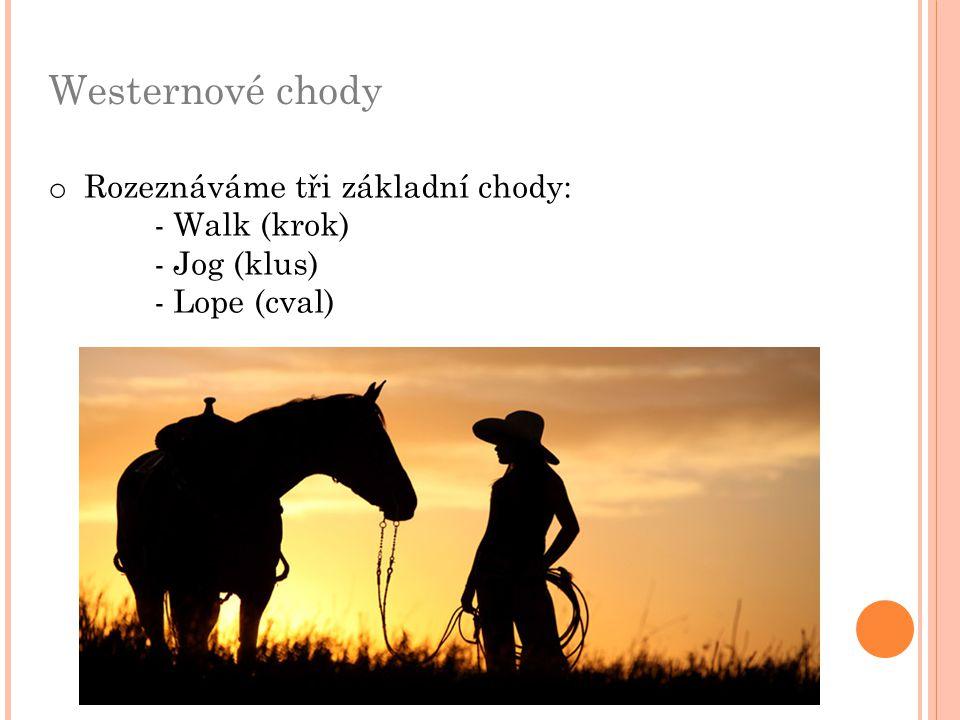 Westernové chody Rozeznáváme tři základní chody: - Walk (krok)