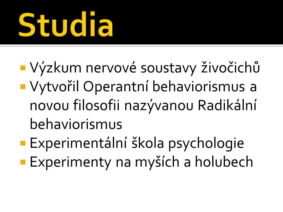 Studia Výzkum nervové soustavy živočichů