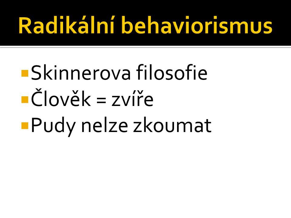 Radikální behaviorismus