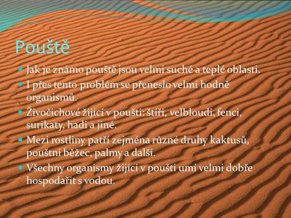 Pouště Jak je známo pouště jsou velmi suché a teplé oblasti.