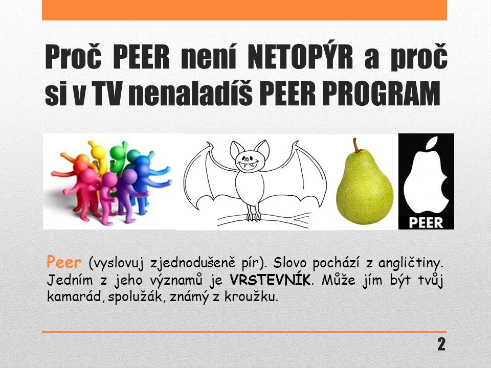 Proč PEER není NETOPÝR a proč si v TV nenaladíš PEER PROGRAM