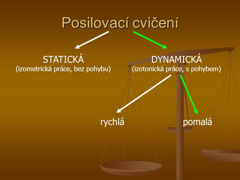 Posilovací cvičení STATICKÁ (izometrická práce, bez pohybu)