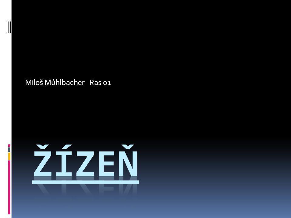 Miloš Múhlbacher Ras 01 Žízeň