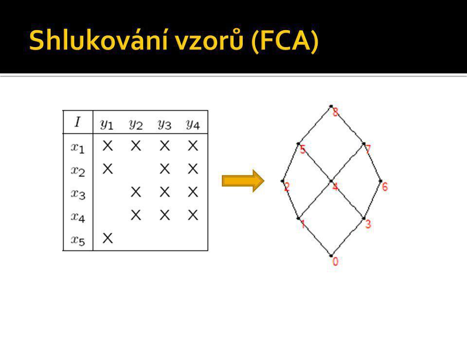 Shlukování vzorů (FCA)