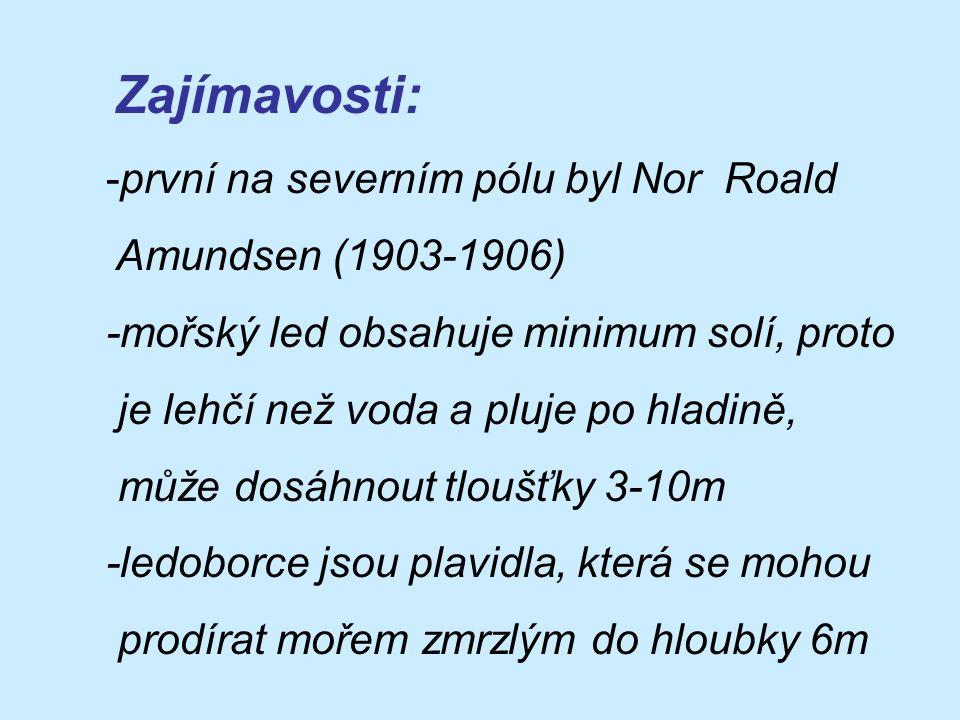 Zajímavosti: první na severním pólu byl Nor Roald Amundsen (1903-1906)
