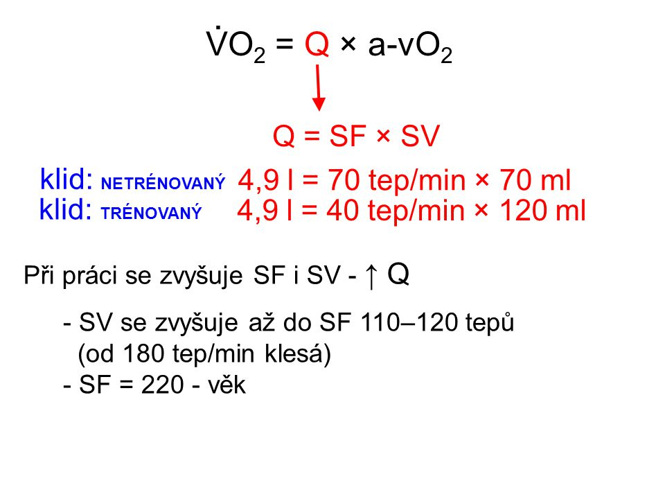 . VO2 = Q × a-vO2 Q = SF × SV klid: NETRÉNOVANÝ