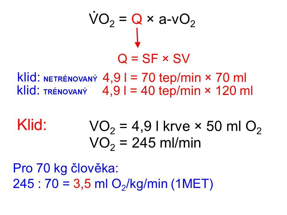 . Klid: VO2 = Q × a-vO2 VO2 = 4,9 l krve × 50 ml O2 VO2 = 245 ml/min