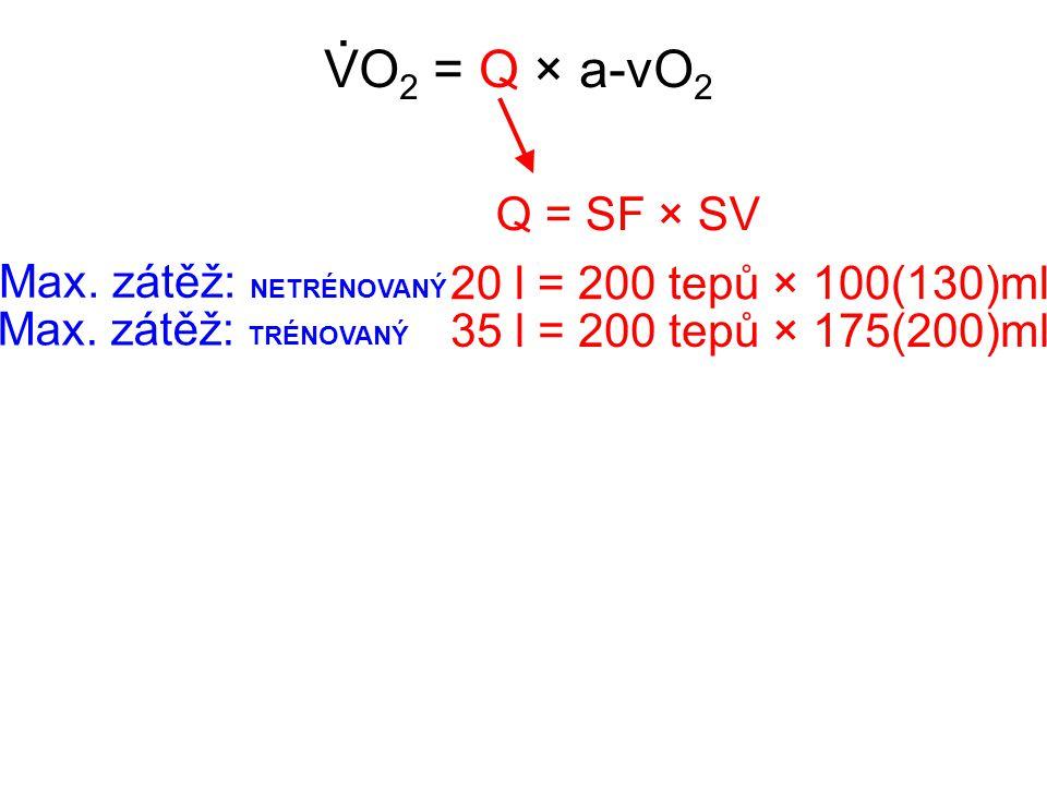 . VO2 = Q × a-vO2 Q = SF × SV Max. zátěž: NETRÉNOVANÝ