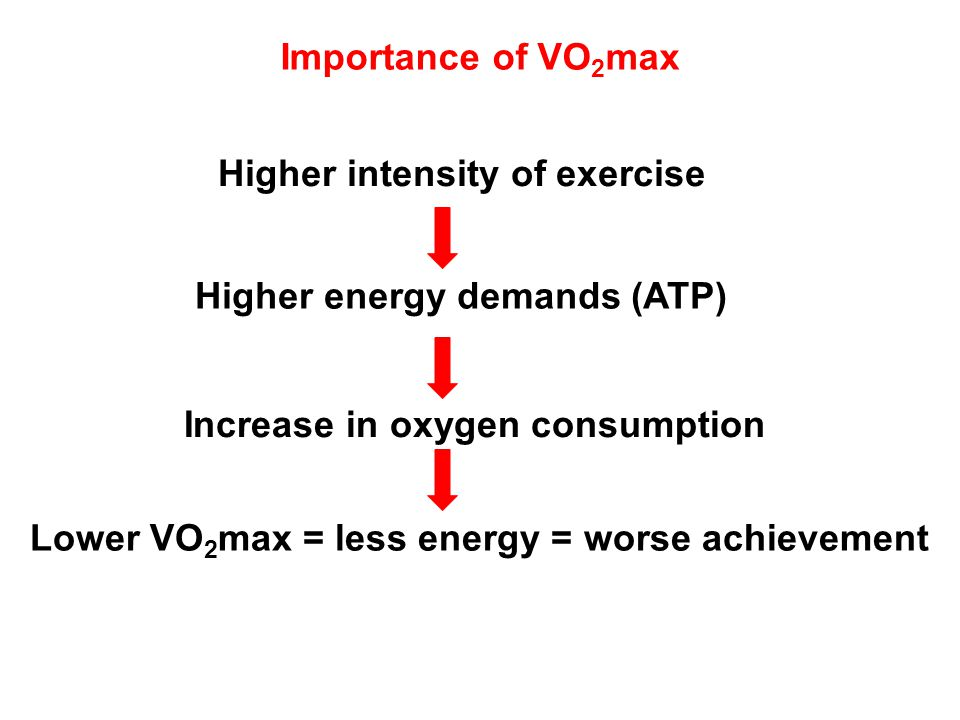 Importance of VO2max Higher intensity of exercise. Higher energy demands (ATP) Increase in oxygen consumption.