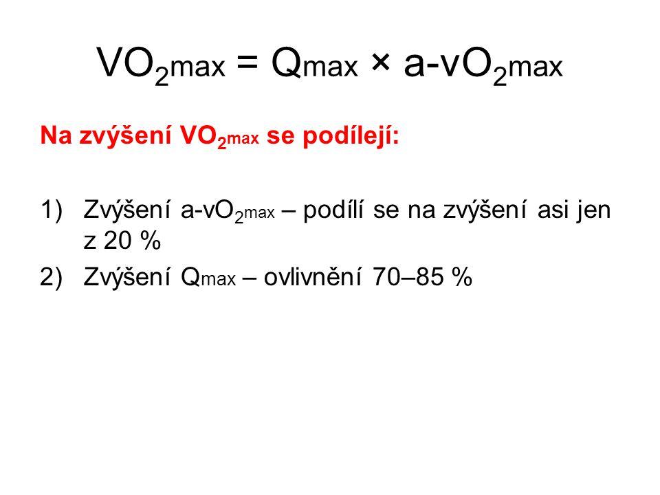 VO2max = Qmax × a-vO2max Na zvýšení VO2max se podílejí:
