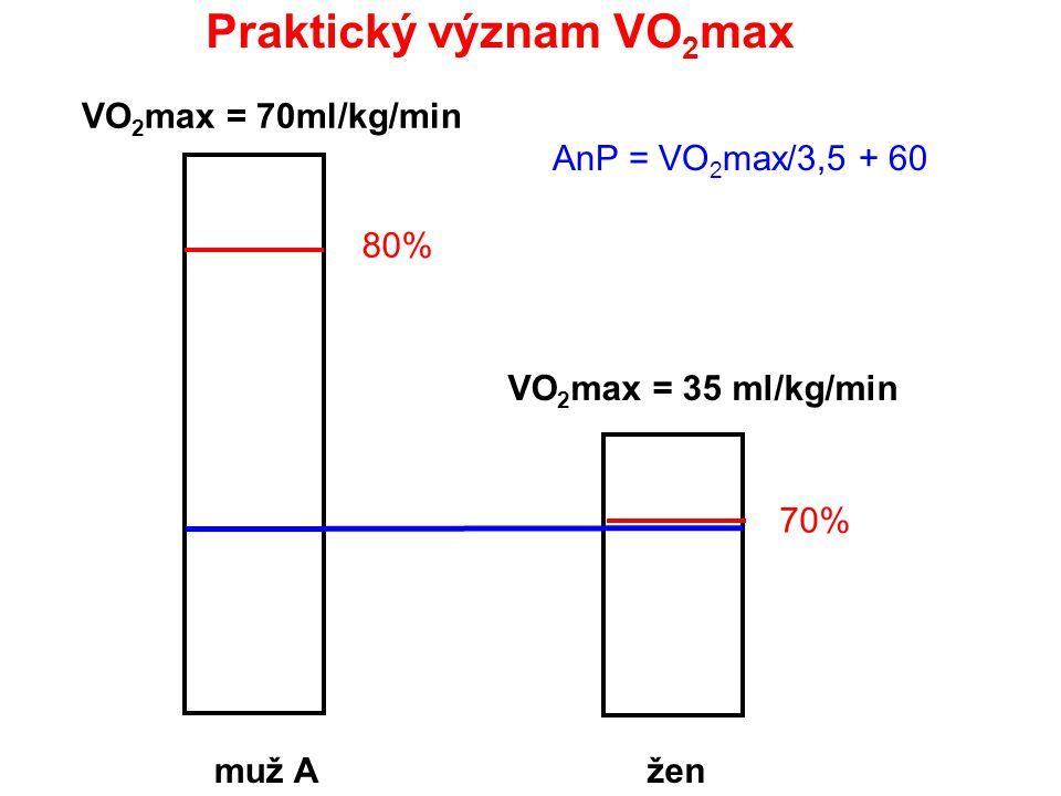 Praktický význam VO2max