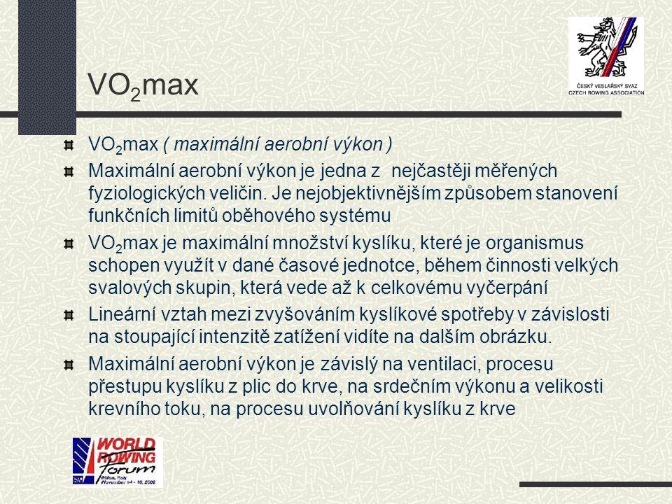 VO2max VO2max ( maximální aerobní výkon )