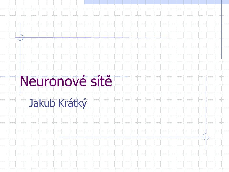 Neuronové sítě Jakub Krátký