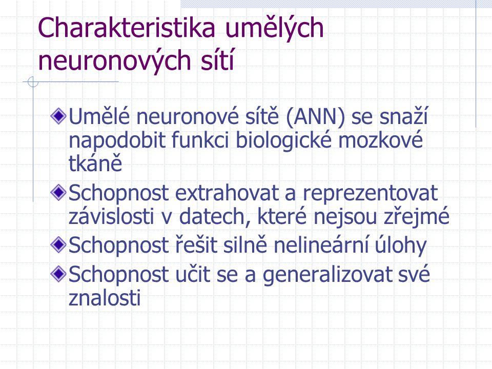Charakteristika umělých neuronových sítí