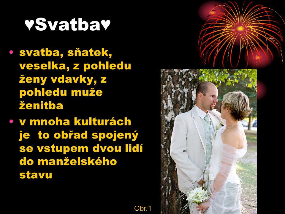 ♥Svatba♥ svatba, sňatek, veselka, z pohledu ženy vdavky, z pohledu muže ženitba.
