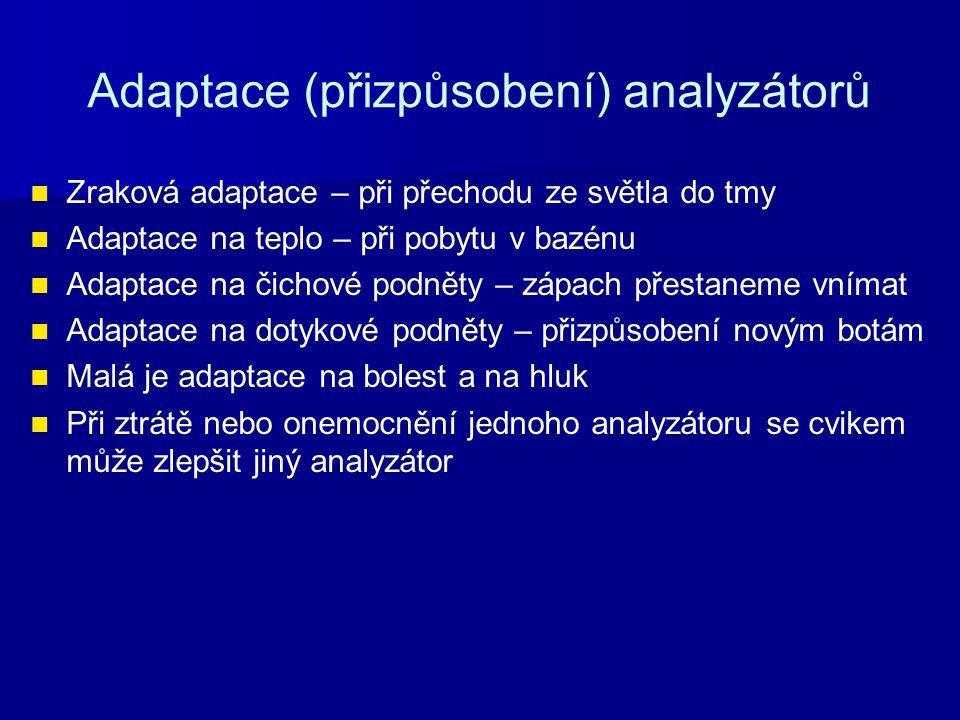 Adaptace (přizpůsobení) analyzátorů