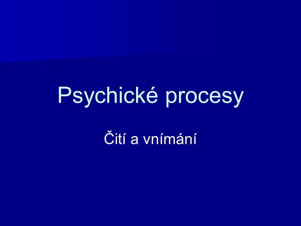 Psychické procesy Čití a vnímání