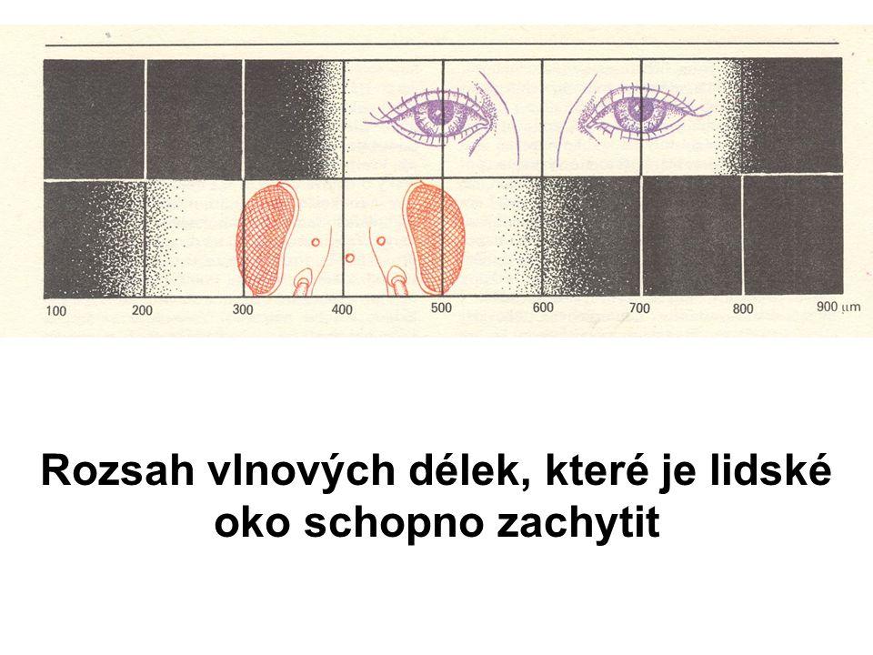 Rozsah vlnových délek, které je lidské oko schopno zachytit