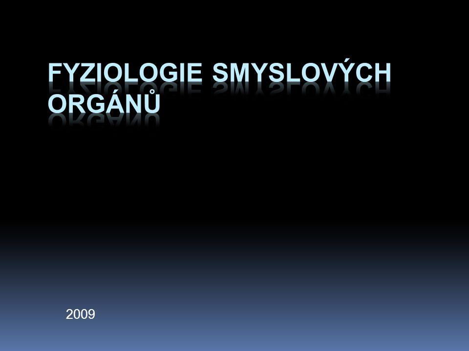 Fyziologie smyslových orgánů