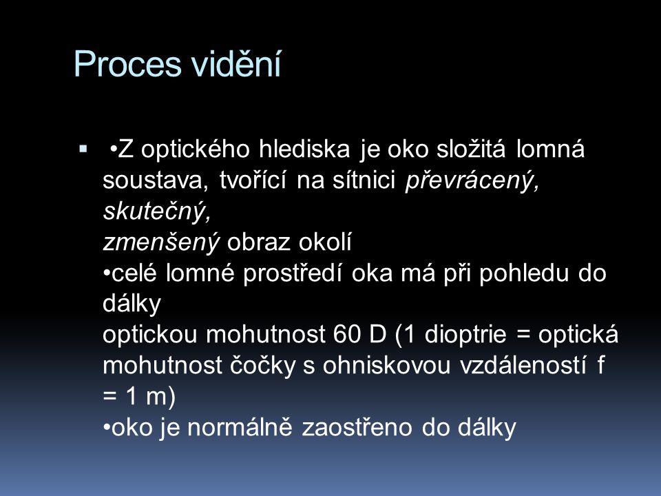 Proces vidění