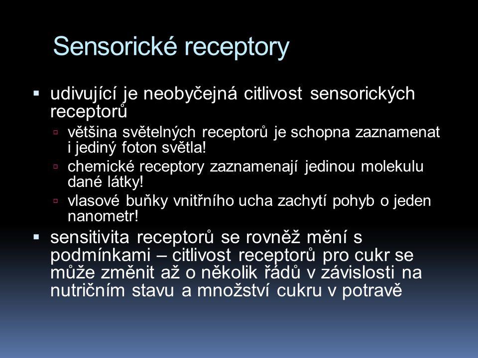 Sensorické receptory udivující je neobyčejná citlivost sensorických receptorů.