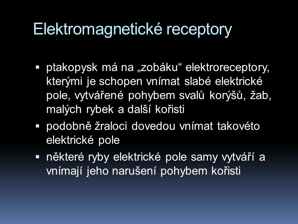 Elektromagnetické receptory