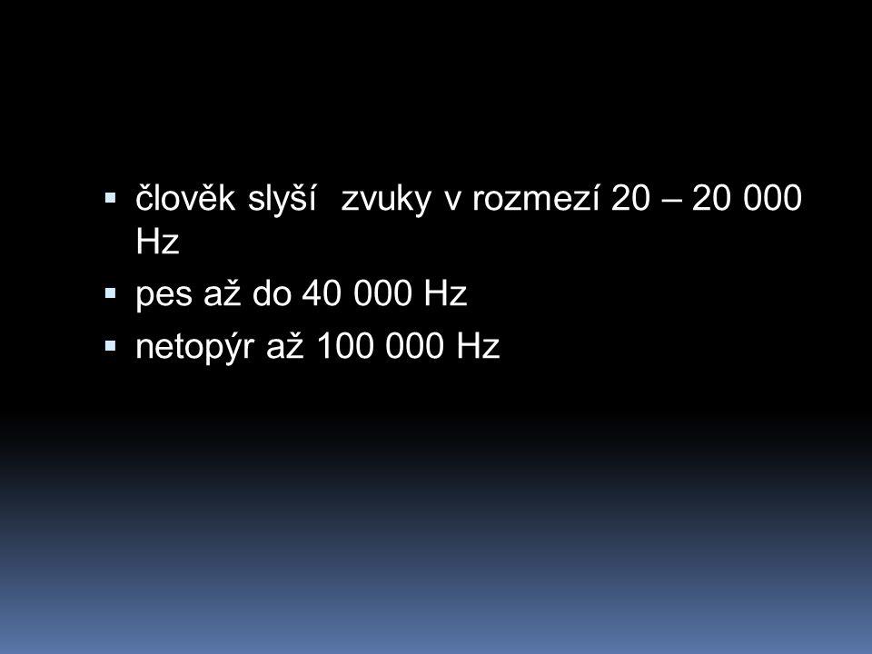 člověk slyší zvuky v rozmezí 20 – 20 000 Hz