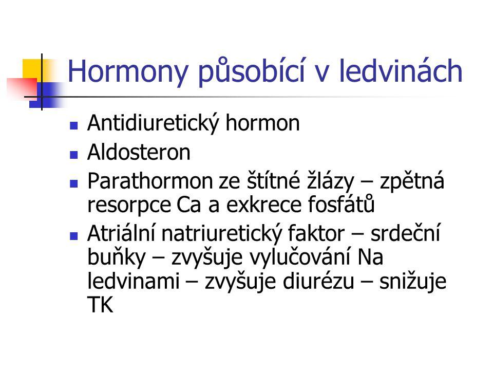 Hormony působící v ledvinách