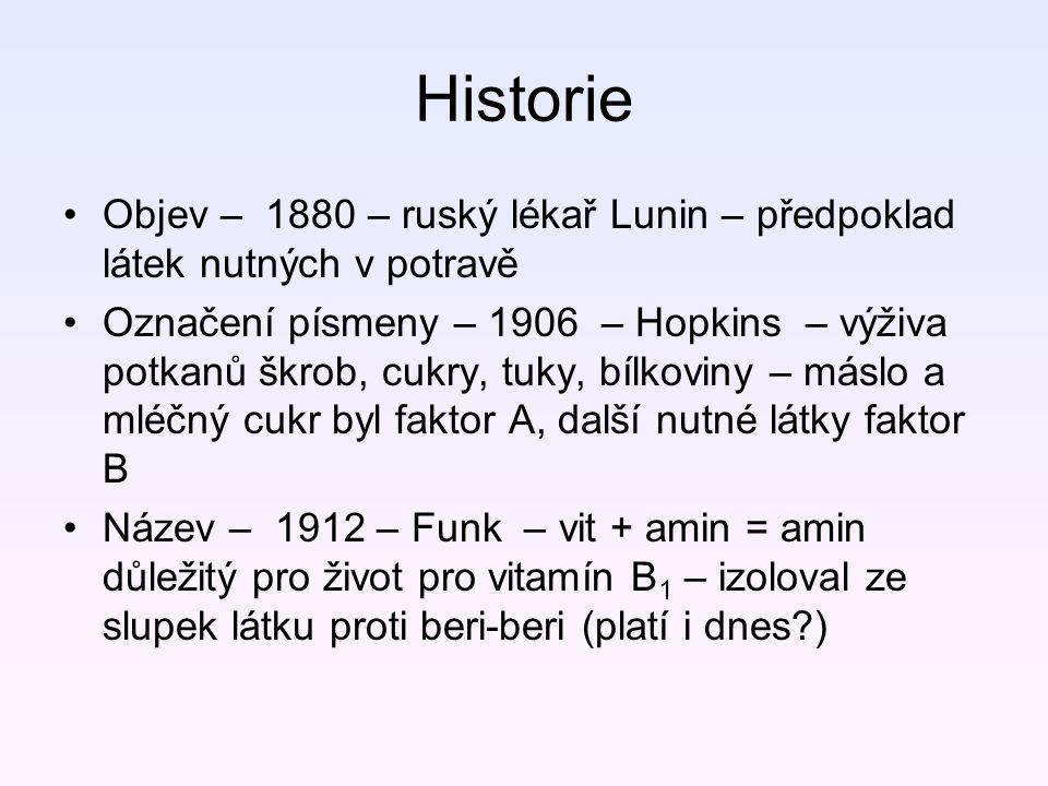Historie Objev – 1880 – ruský lékař Lunin – předpoklad látek nutných v potravě.