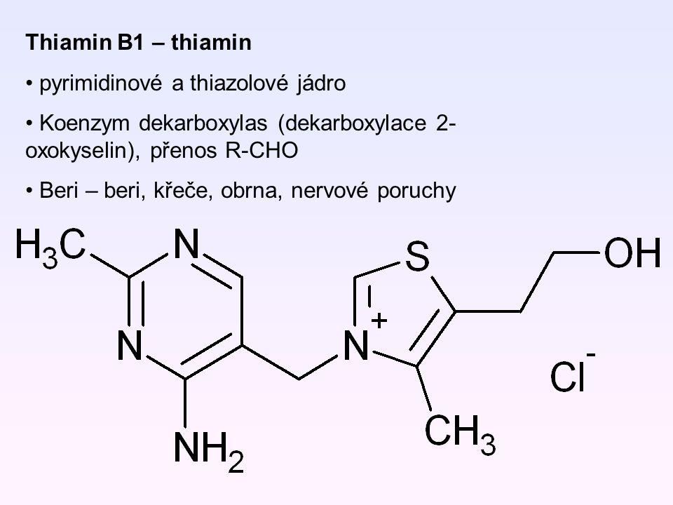 Thiamin B1 – thiamin pyrimidinové a thiazolové jádro. Koenzym dekarboxylas (dekarboxylace 2-oxokyselin), přenos R-CHO.