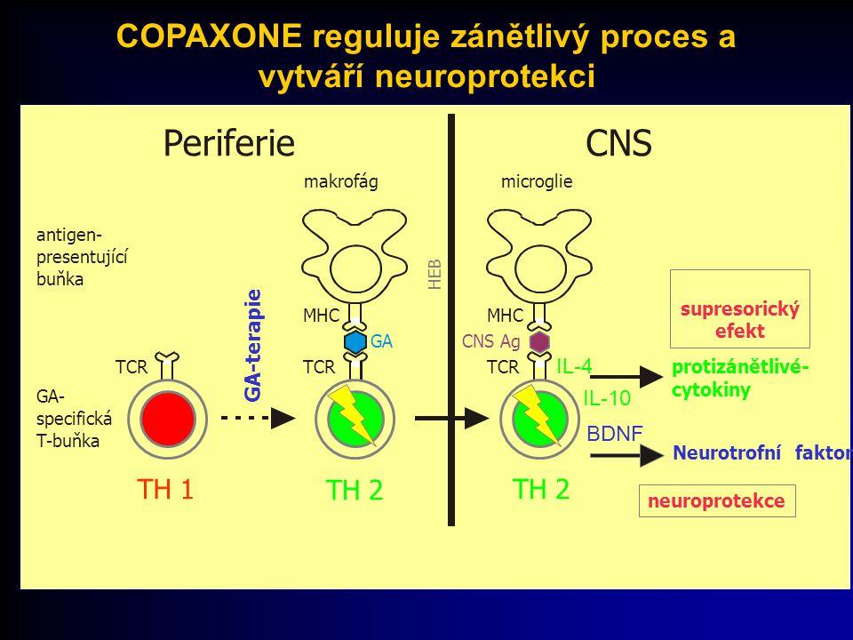 COPAXONE reguluje zánětlivý proces a vytváří neuroprotekci